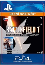 Battlefield 1 Shortcut Kit: Assault Bundle (PS4)